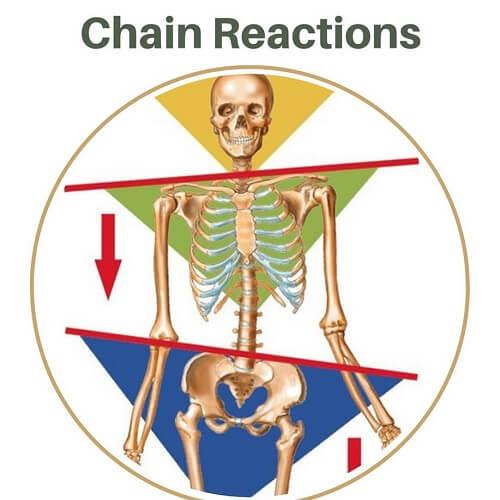 عکسالعملهای زنجیرهای در حرکات اصلاحی