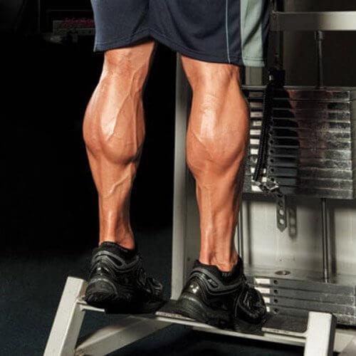 تمرین عضلات ساق