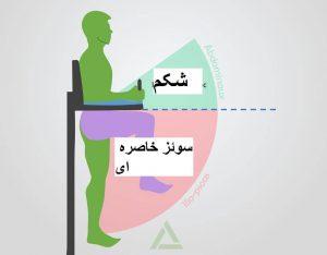آناتومی حرکات بدنسازی: بالاآوردن پا در حالت اویزان از بارفیکس(زیرشکم بارفیکس)