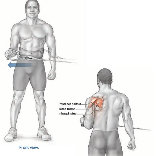 آناتومی حرکات بدنسازی: چرخش خارجی بازو سیم کش