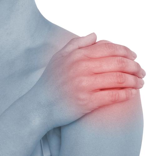 درد شانه در بدنسازی